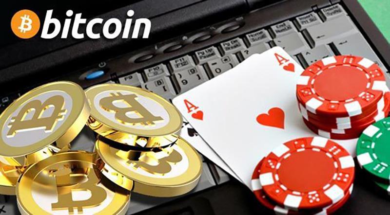 무제한 비트 코인 도박